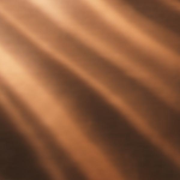 shell_mayan_copper-7c778420ab31cdde25d03ecb504f65dc.jpg
