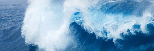 shell_ocean_blue_inspiration-e7adfc78cfef7a92e40de62f8be684be.jpg